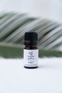 An essential oil blend to provide a remedy for work stress and anxiety. Essential Oils For Headaches, Essential Oils For Sleep, Essential Oil Blends, Burnout Recovery, Job Burnout, Work Stress, Stress And Anxiety, Oils For Energy, How To Control Anger