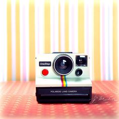 Vintage Camera Photo, Collectors Photography Print, Polaroid Instant One Step Retro 80s Minimalist Fine Art on Etsy, $15.00