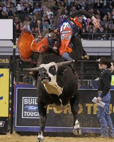 Austin Meier on Rango. Rank bull! Rango never resorted to dirty tricks. He was a good bull to draw, but ya had to ride him then too for the full 8 sec lol ... Alves rode him for his highest combined score of 92.25. I THINK that was the last time he was rode n it was in Nashville, before goin' in the hospital for an intestinal issue n developed heart probs n died unexpectedly! Sounds like he had a heart attack but I've never read that, jus' assumin' ... RIP Rango, I enjoyed watchin' ya!!