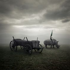 Rhino rider by Leszek Bujnowski on Fotoblur | Digital Manipulation Photography