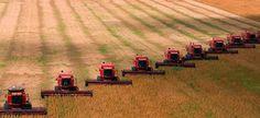Impatto dell'agricoltura sulla biosfera