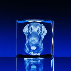 3D portrait in glass