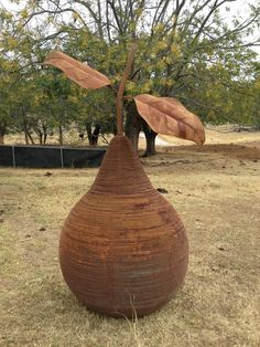 Garden Pear available at The Moree Gallery