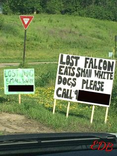 Lost Dog... Lost Falcon!