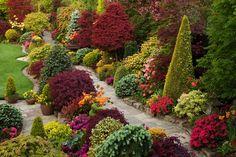 Upper garden (early morning May 18) | Flickr - Photo Sharing!