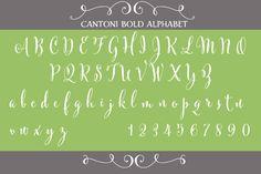 Cantoni Bold Hand Lettered Font ~ Script Fonts on Creative Market