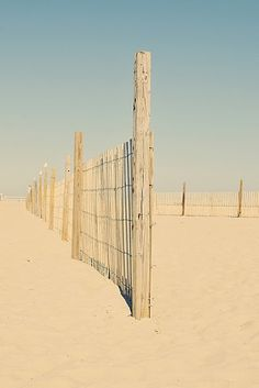 fences in the sand~