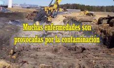 https://emagen.com.mx/contaminacion/frases-de-contaminacion/