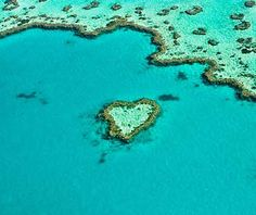 located in the Great Barrier Reef near the Whitsunday Islands off the coast of Queensland - SO COOL