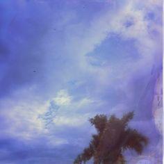 #VSCOcam #vsco #clouds #man #tree