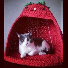 En trapillo - idée pour le chat !