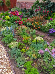 front yard landscape landscaping