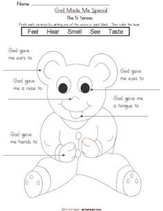 5 senses preschool printables printable worksheet and coloring page 5 senses