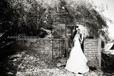 gorgeous trash the dress in a Mexican Ranch!
