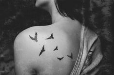 Flying Birds 'Feel free, Be yourself, express yourself'