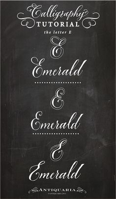 "Antiquaria: Calligraphy Tutorial | the Capital Letter ""E"""