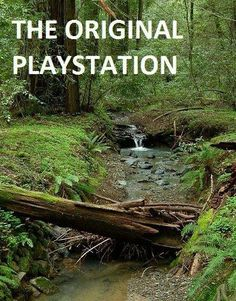 The Original Playstation....quote from Cottage in the Oaks.