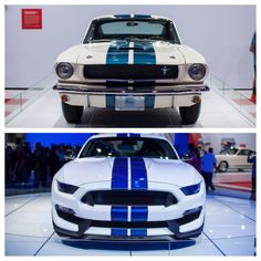 Evolution of a classic. Ford Mustang Shelby GT350