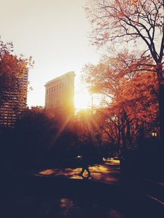 This #fall, make sure you experience #sunset in #Madison #Square #Park | #Flatiron #NYC | #CM5thAve