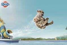 #Publicidad de parque acuático. ¡qué ganas!