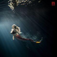Doda by Rafal Makiela on Mermaid Cove, Mermaid Art, Mermaid Tails, Real Mermaids, Mermaids And Mermen, Underwater Photos, Underwater Photography, Ocean Underwater, Underwater Model