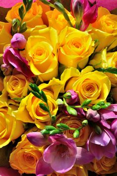 A Bouquet of yellow roses