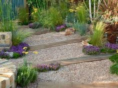 Such a pretty little path... love the splashes of purple amongst the green.