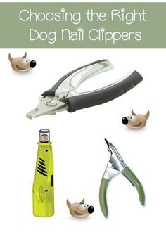 The safest dog nail clippers are those that won't cause a ton of pain. Different dog nail clippers have different methods, so the right one is key. Dog Nail Clippers, Dog Health Tips, Pet Health, Health Care, Cute Dog Collars, Dog Grooming Tips, Dog Nails, Dog Care Tips, Pet Tips