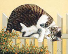 Lang May 2014 wallpaper: American Cat