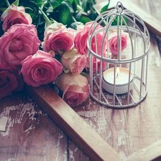roses and a bird cage candle holder for some delightful Tea Light Candles, Tea Lights, Holiday Photography, Magic Circle, Bird Cage, Vintage Decor, Candle Holders, Shabby Chic, Royalty Free Stock Photos