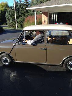 My 1972 Innocenti Mini-Cooper.