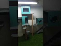 Mainan kucing,cat condo,cat scratchers - YouTube
