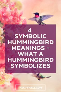Hummingbirds have a deep spiritual meaning. They joyfully float through the air outside of time bringing luck, joy, and love to those they encounter. Hummingbird Spiritual Meaning, Hummingbird Symbolism, Spiritual Guidance, Spiritual Awakening, Free Angel, Healing Light, Light Quotes, Spirituality Books, Incredible Gifts