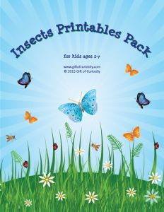 Insects Printable Pack with 75 activities for kids ages 2-7 focused on shapes, sizes, colors, sorting, puzzles, mazes, fine motor, math, and literacy. What a great pack for a preschool or kindergarten insect unit. This pack has it all! || Gift of Curiosity
