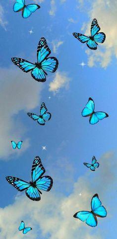 Iphone Wallpaper Themes, Purple Wallpaper Iphone, Cartoon Wallpaper Iphone, Cute Patterns Wallpaper, Iphone Background Wallpaper, Aesthetic Iphone Wallpaper, Disney Wallpaper, Cellphone Wallpaper, Blue Butterfly Wallpaper