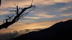 Sierra de San Vicente (Toledo) - Momentos para recordar toda la vida...