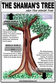 Native American Spirituality, Native American Wisdom, American Indians, Shaman Woman, Pseudo Science, Medicine Wheel, Religion, Plantation, Spirit Guides