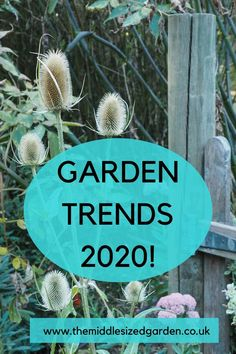 The latest trends for your garden or backyard - sustainable gardening, wildlife-friendly plants, wildflowers and easy tips Colorful Garden, Colorful Flowers, Sustainable Gardening, Urban Gardening, Cottage Garden Plants, Backyard Plants, Low Maintenance Garden Design, Insect Hotel, Easy Care Plants
