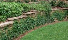 Anchor™ Diamond® Retaining Wall Straight - Terraced Walls