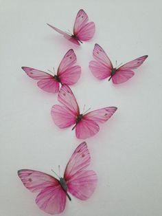8 Rose Pink Butterflies Butterfly Picture Frame Home Wall Wedding Decorations 8 Rose Pink Schmetterlinge Schmetterling Bilderrahmen Home Wall Hochzeitsdekorationen Butterfly Drawing, Butterfly Tattoo Designs, Butterfly Pictures, Butterfly Wall Art, Butterfly Wallpaper, Pink Butterfly, Butterfly Kisses, Art Mural Papillon, Borboleta Tattoo