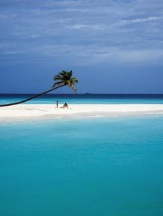 Beautiful shot of a Halaveli Island beach in the Maldives.