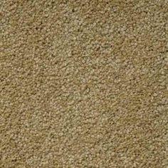 ELEGANT FORM II HONEY Texture TruSoft® Carpet - STAINMASTER®