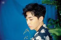 Xiumin Exo TheWarExo KoKoBop Weareone Suho Baekhyun Yixing Chanyeol Kai DO Sehun Chen