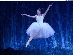 Boston Ballet's New Production of the Nutcracker