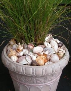Awesome Porch & Garden Planters with a Coastal and Nautical Theme Add seashells to pots and your garden gardening ideas with shells and more. The post Awesome Porch & Garden Planters with a Coastal and Nautical Theme appeared first on Garden Easy. Beach Gardens, Outdoor Gardens, Coastal Gardens, Coastal Homes, Coastal Decor, Coastal Cottage, Backyard Planters, Porch Planter, Indoor Planters