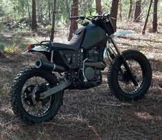 Honda xr 600 custom