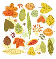 42. Set autumnal leaves vector
