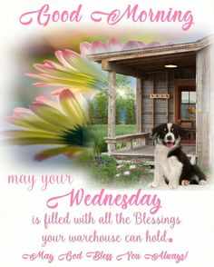 Good Morning Wednesday, Days Of Week, Facebook Image, Religious Quotes, Pet Names, Puppy Love, Blessed, Blessings, Happy