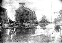 1900 Galveston Hurricane | 1900 Storm, Photograph labeled Ruins Galveston Medical College