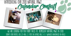 Is your pet an undiscovered star? If so, submit ONE of your best photographs of your furry friend to represent Natural Pawz in 2018!